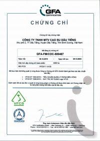 Certificate VFCS GFA Vie